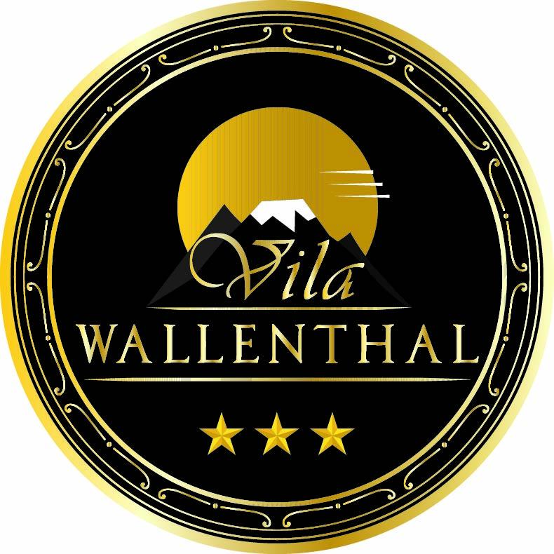 Vila Wallenthal Hateg